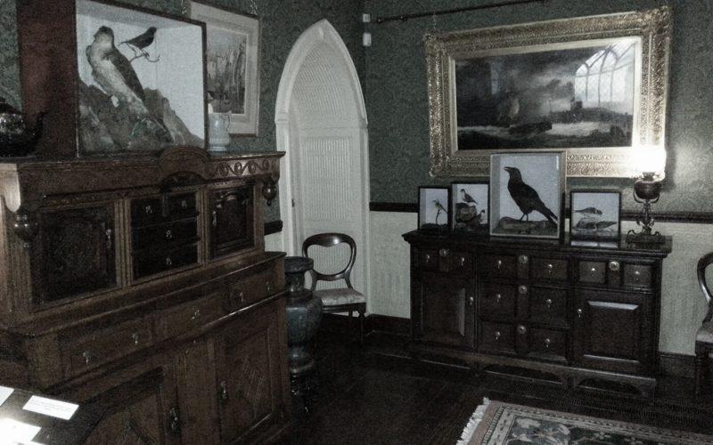 Smithills Hall stuffed birds